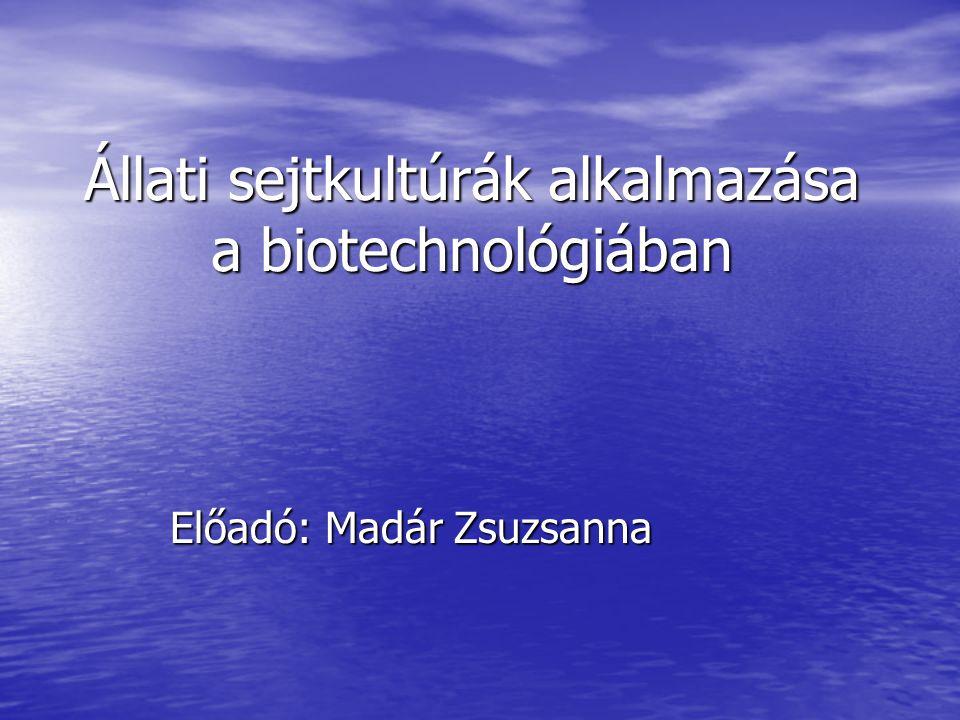 Bevezető ▪ a technológiának gazdag hagyományai vannak ▪ vakcina gyártás (állati és emberi) ▪ állati szövetek felhasználása rekombináns fehérjék előállítására (humán inzulin, növekedési hormon), kínai hörcsög petefészek és kölyök hörcsög vese sejtvonalakat használnak ▪ monoklonális ellenanyag termeltetésére (hybridoma technika: ellenanyagot termelő limfocita és tumorsejt fúziójával létrehozott sejt) ▪ Az állati szövetek tenyésztésével feltárhatók az állati sejtekre jellemző biokémiai utak és a sejtszintű szabályozás