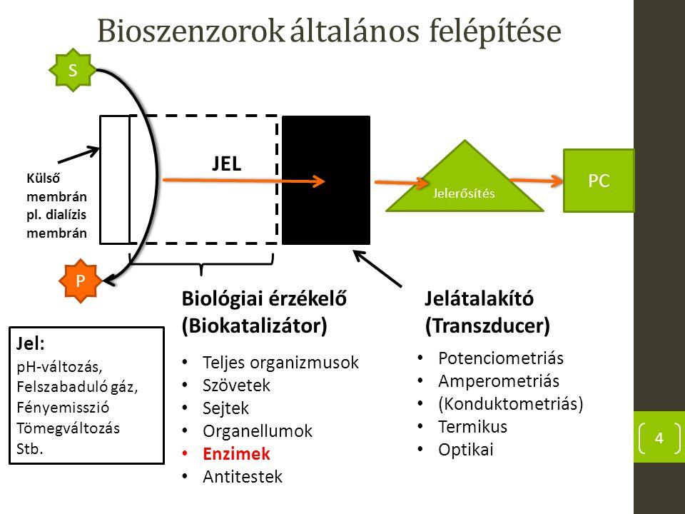 Bioszenzorok általános felépítése 4 Külső membrán pl. dialízis membrán Jelátalakító (Transzducer) Biológiai érzékelő (Biokatalizátor) Potenciometriás