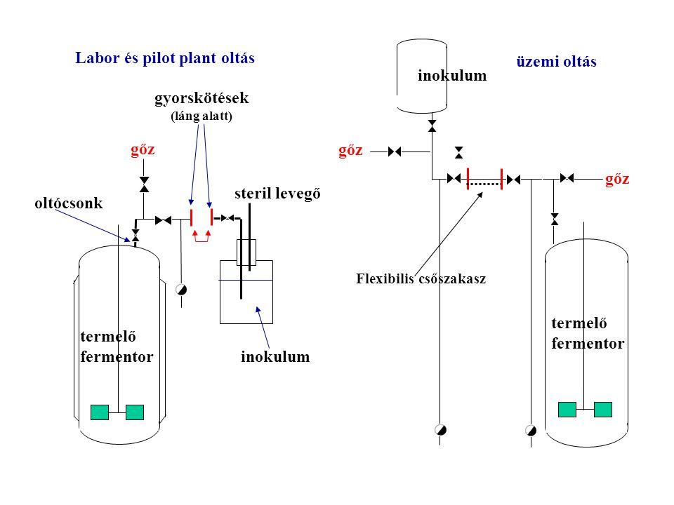 gőz oltócsonk inokulum gyorskötések (láng alatt) steril levegő gőz inokulum termelő fermentor termelő fermentor Labor és pilot plant oltás üzemi oltás Flexibilis csőszakasz