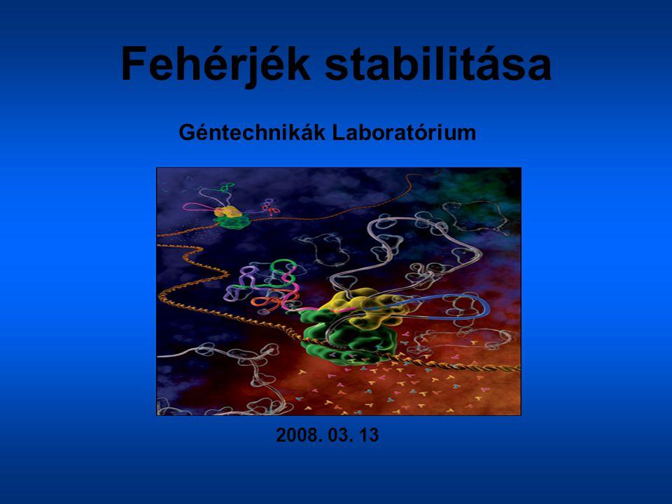 Fehérjék stabilitása Géntechnikák Laboratórium 2008. 03. 13