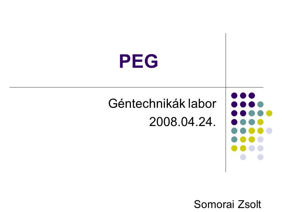 PEG Géntechnikák labor 2008.04.24. Somorai Zsolt