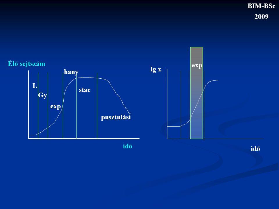L Gy exp hany stac pusztulási Élő sejtszám idő exp lg x idő BIM-BSc 2009