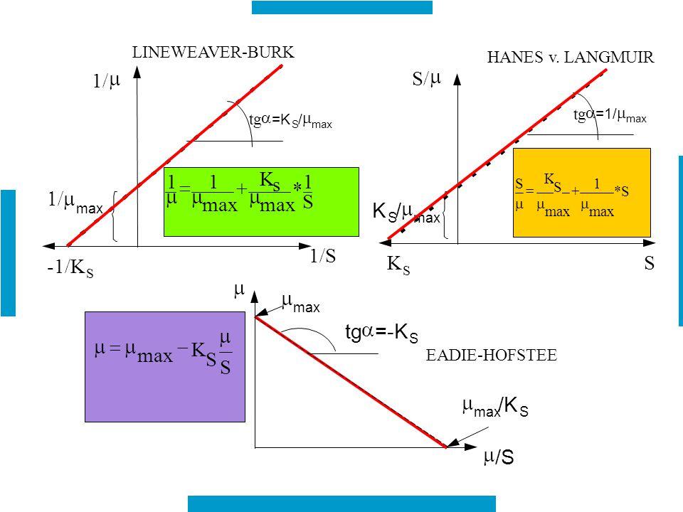 tg  =K S /  max 1/  1/S -1/K S  max LINEWEAVER-BURK tg  =1/  max S/  S K S /  max K S HANES v. LANGMUIR   /S S K S S   max * 1  tg 
