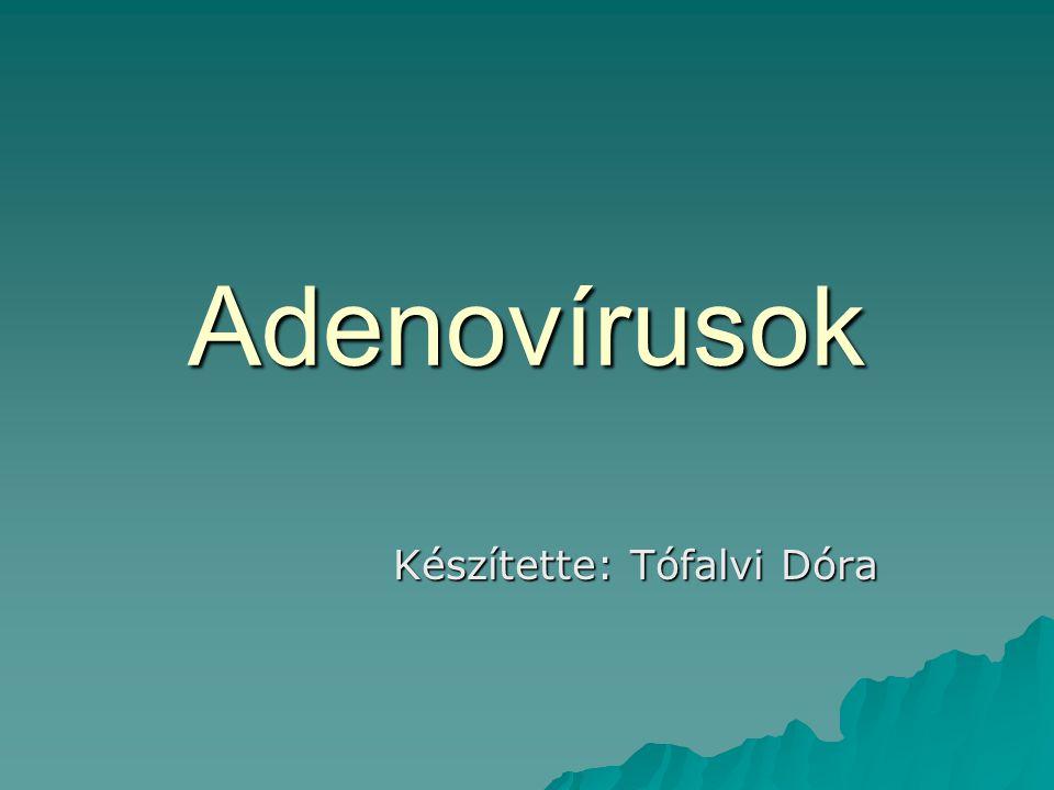 Adenovírusok Készítette: Tófalvi Dóra Készítette: Tófalvi Dóra