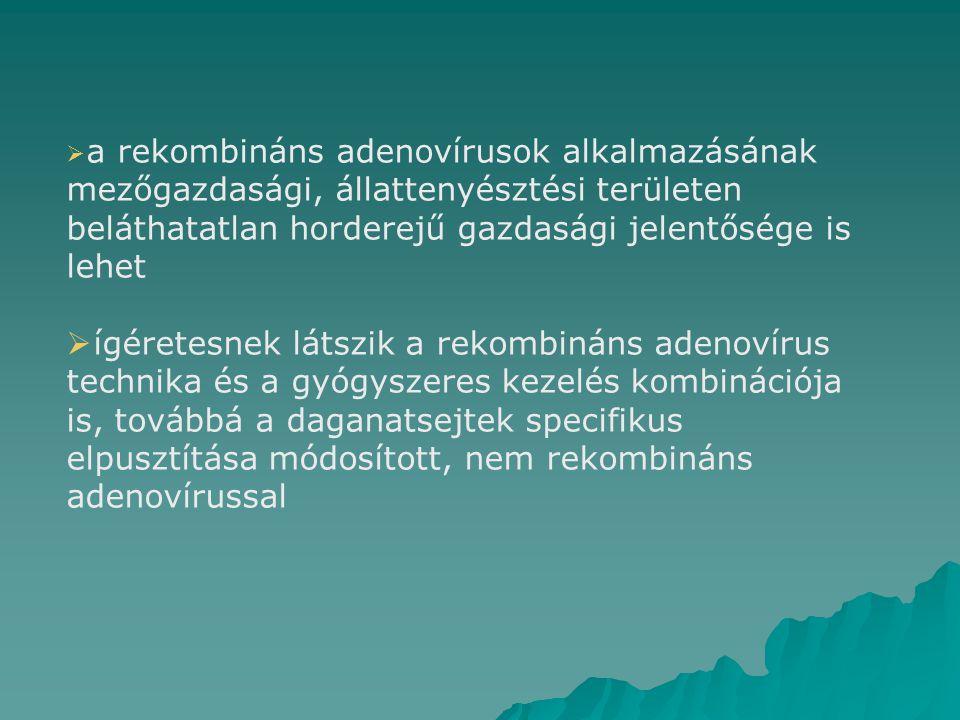 a rekombináns adenovírusok alkalmazásának mezőgazdasági, állattenyésztési területen beláthatatlan horderejű gazdasági jelentősége is lehet  ígéretesnek látszik a rekombináns adenovírus technika és a gyógyszeres kezelés kombinációja is, továbbá a daganatsejtek specifikus elpusztítása módosított, nem rekombináns adenovírussal