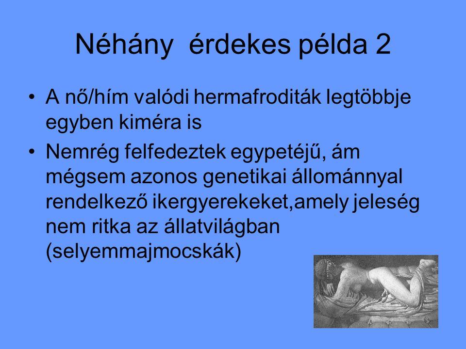 Néhány érdekes példa 2 A nő/hím valódi hermafroditák legtöbbje egyben kiméra is Nemrég felfedeztek egypetéjű, ám mégsem azonos genetikai állománnyal rendelkező ikergyerekeket,amely jeleség nem ritka az állatvilágban (selyemmajmocskák)