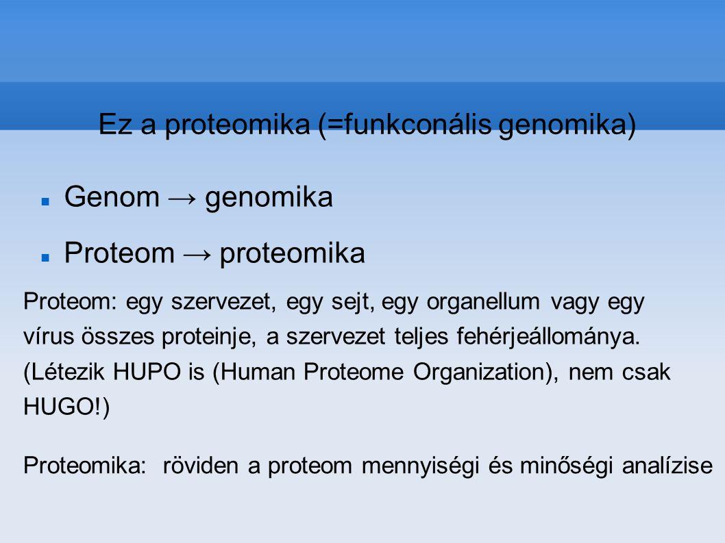 A proteomika a fehérjék kutatásával komplex módon foglalkozó tudományterület, amely meg kívánja ismerni a fehérjék szerkezetét, biológiai funckióját és ezek térbeli és időbeli változását.