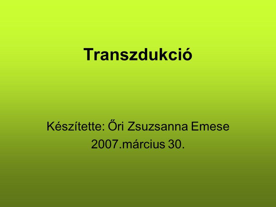 Transzdukció Készítette: Őri Zsuzsanna Emese 2007.március 30.