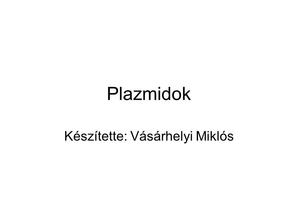 Plazmidok Készítette: Vásárhelyi Miklós