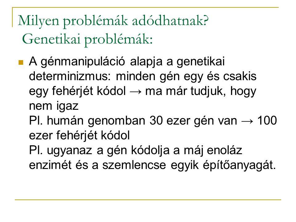 Milyen problémák adódhatnak? Genetikai problémák: A génmanipuláció alapja a genetikai determinizmus: minden gén egy és csakis egy fehérjét kódol → ma