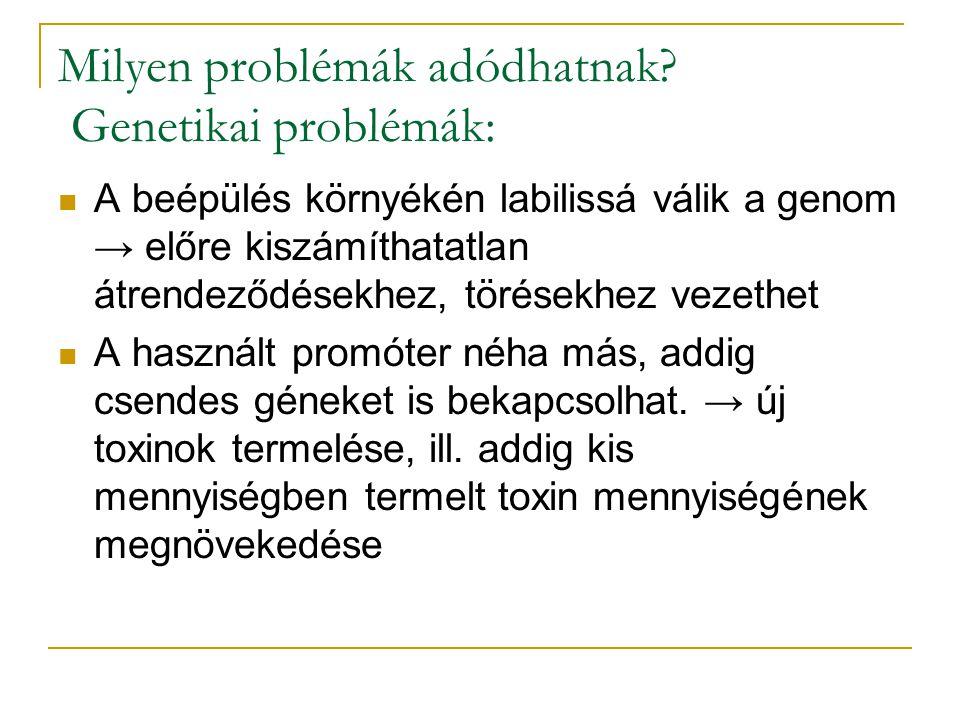 Milyen problémák adódhatnak? Genetikai problémák: A beépülés környékén labilissá válik a genom → előre kiszámíthatatlan átrendeződésekhez, törésekhez