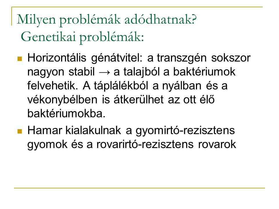 Milyen problémák adódhatnak? Genetikai problémák: Horizontális génátvitel: a transzgén sokszor nagyon stabil → a talajból a baktériumok felvehetik. A