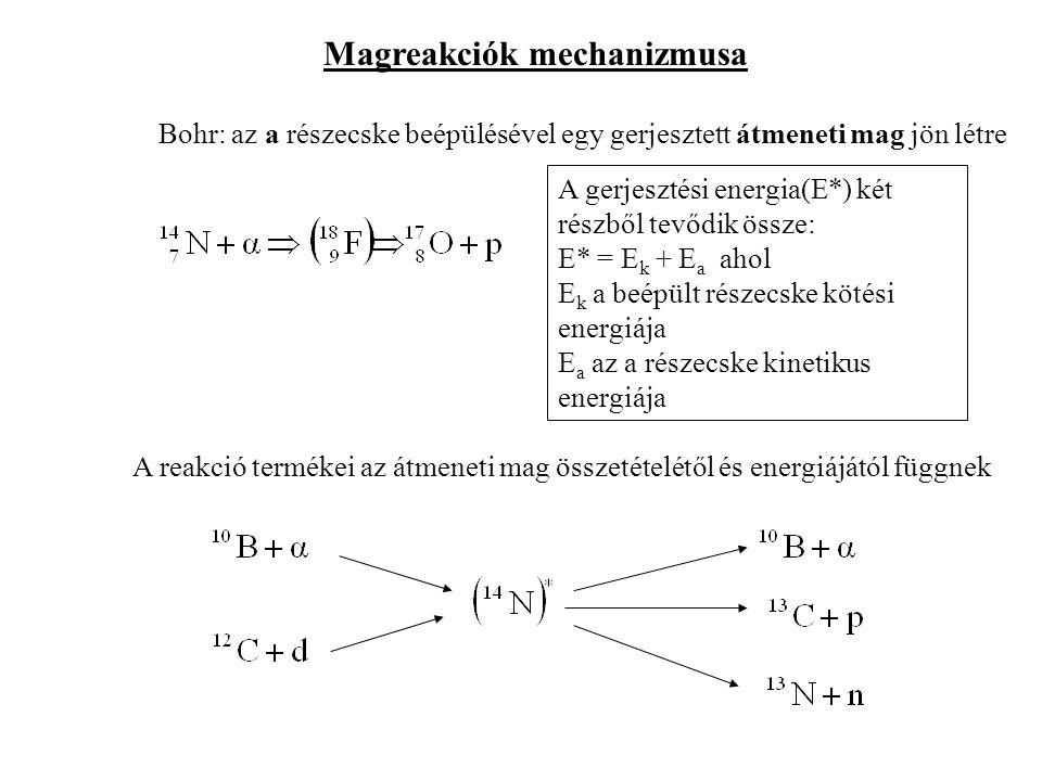 Magreakciók mechanizmusa Bohr: az a részecske beépülésével egy gerjesztett átmeneti mag jön létre A gerjesztési energia(E*) két részből tevődik össze: E* = E k + E a ahol E k a beépült részecske kötési energiája E a az a részecske kinetikus energiája A reakció termékei az átmeneti mag összetételétől és energiájától függnek