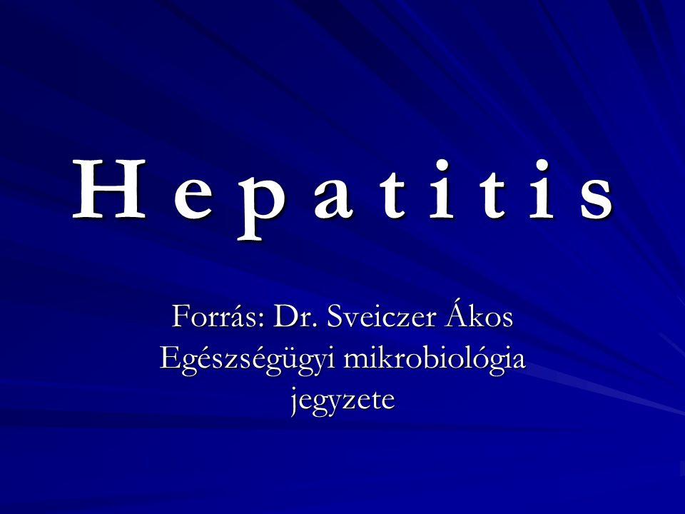 Hepatitis-A-vírus (HAV) A hepatitis először felismert kórokozója Család: Picornaviridae (RNS) Lappangási idő: 15-50 nap, 10% beteg, 0,1% fulmináns Terjedése: enterálisan (élelmiszerek, víz v.
