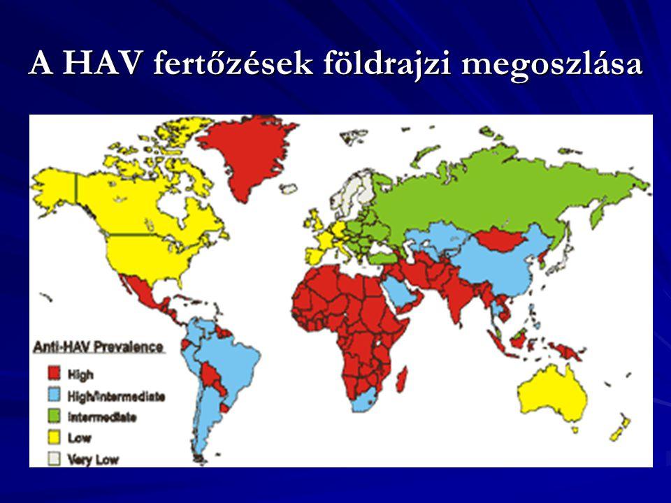 Hepatitis-B-vírus (HBV) Család: Hepadnaviridae (DNS) szérumhepatitis (hepatitis = májgyulladás) kórokozója Terjedése& eredete: hematogén-limfogén úton, leggyakrabban nosocomialis eredetű: átvihető vérátömlesztéssel, humán savóval, rosszul sterilezett tűvel, fecskendővel, egyéb orvosi kellékekkel, műszerekkel.