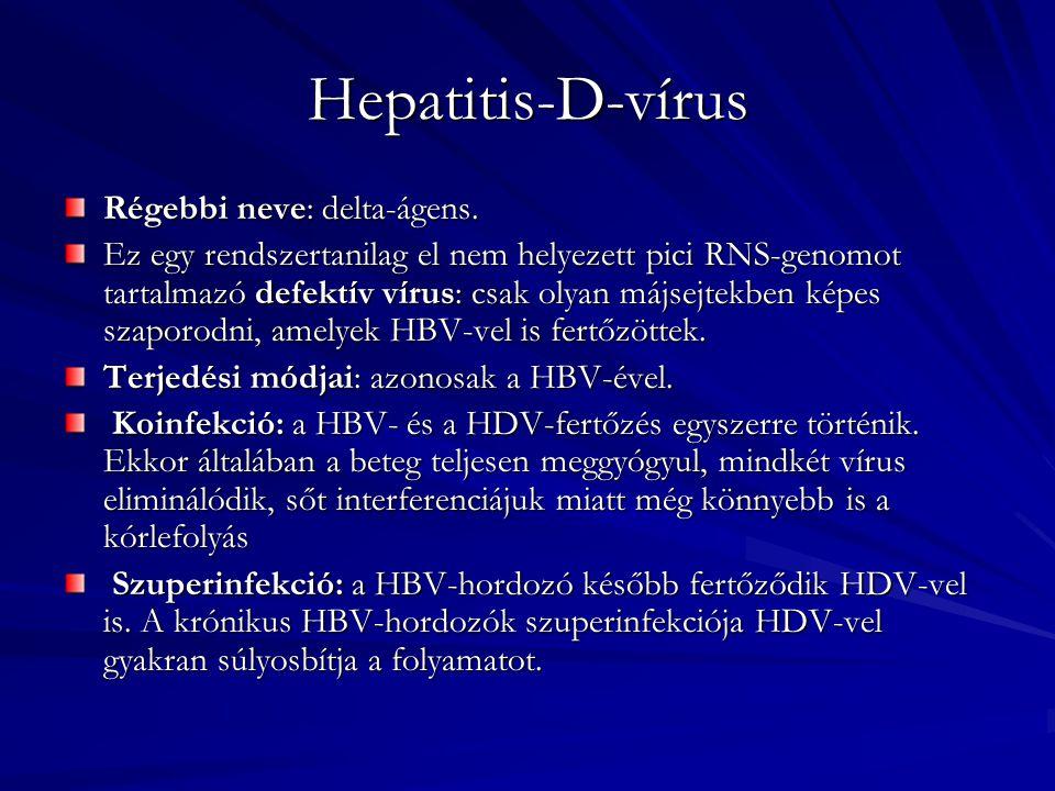 Hepatitis-C-vírus (HCV) Család: Filoviridae (RNS) Lappangási idő: 6-12 hét Terjedése: vérrel, vérkészítményekkel, ill.