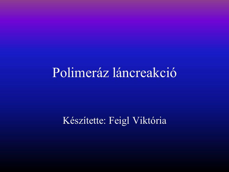 Polimeráz láncreakció Készítette: Feigl Viktória