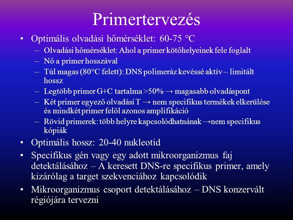 Primertervezés Optimális olvadási hőmérséklet: 60-75 °C –Olvadási hőmérséklet: Ahol a primer kötőhelyeinek fele foglalt –Nő a primer hosszával –Túl magas (80°C felett): DNS polimeráz kevéssé aktív – limitált hossz –Legtöbb primer G+C tartalma >50% → magasabb olvadáspont –Két primer egyező olvadási T → nem specifikus termékek elkerülése és mindkét primer felől azonos amplifikáció –Rövid primerek: több helyre kapcsolódhatnának →nem specifikus kópiák Optimális hossz: 20-40 nukleotid Specifikus gén vagy egy adott mikroorganizmus faj detektálásához – A keresett DNS-re specifikus primer, amely kizárólag a target szekvenciához kapcsolódik Mikroorganizmus csoport detektálásához – DNS konzervált régiójára tervezni