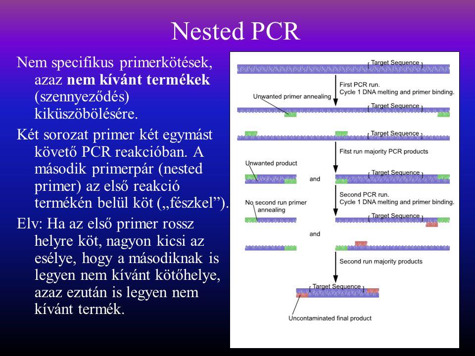 Nested PCR Nem specifikus primerkötések, azaz nem kívánt termékek (szennyeződés) kiküszöbölésére.
