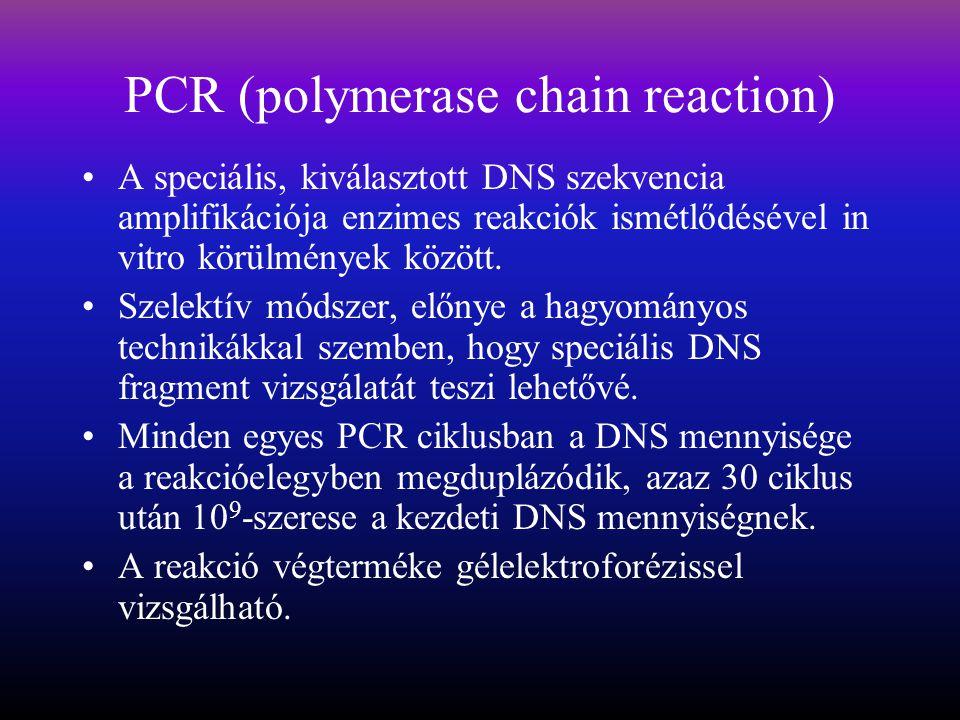 PCR (polymerase chain reaction) A speciális, kiválasztott DNS szekvencia amplifikációja enzimes reakciók ismétlődésével in vitro körülmények között.