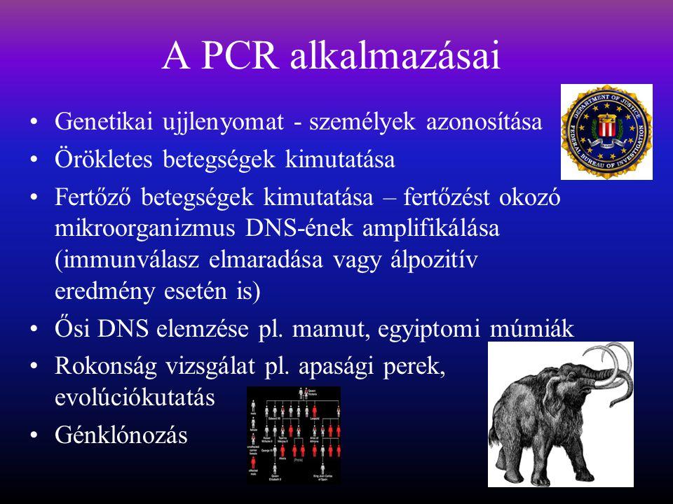 A PCR alkalmazásai Genetikai ujjlenyomat - személyek azonosítása Örökletes betegségek kimutatása Fertőző betegségek kimutatása – fertőzést okozó mikroorganizmus DNS-ének amplifikálása (immunválasz elmaradása vagy álpozitív eredmény esetén is) Ősi DNS elemzése pl.