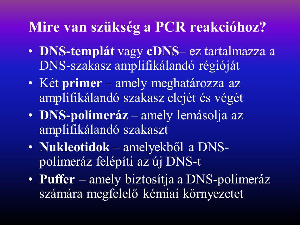 Mire van szükség a PCR reakcióhoz.