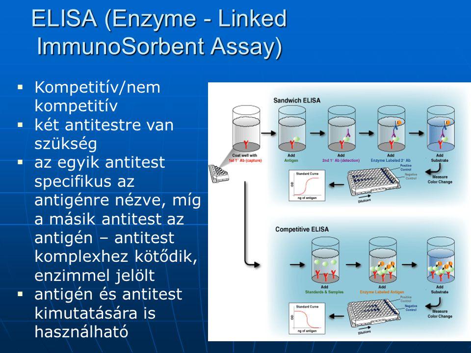Mérési módszerek 1.Radioimmunoassay (RIA) 2. Immunradiometrikus assay (IRMA) 3.
