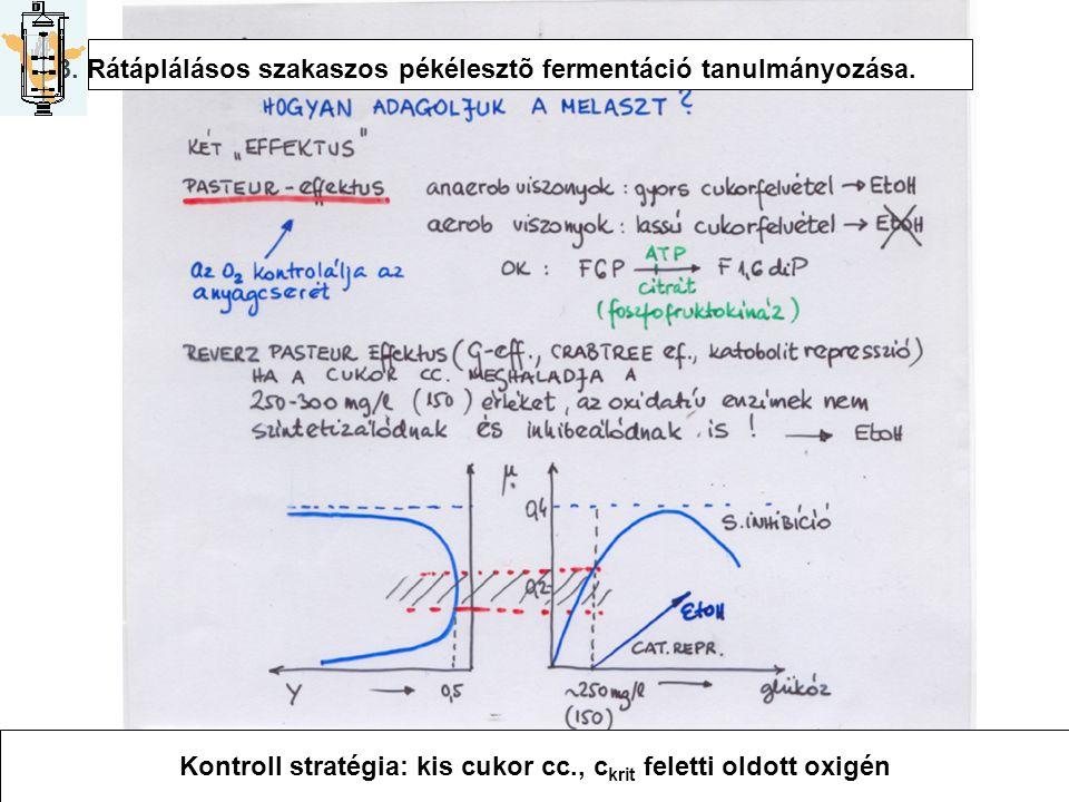 3. Rátáplálásos szakaszos pékélesztõ fermentáció tanulmányozása. Kontroll stratégia: kis cukor cc., c krit feletti oldott oxigén