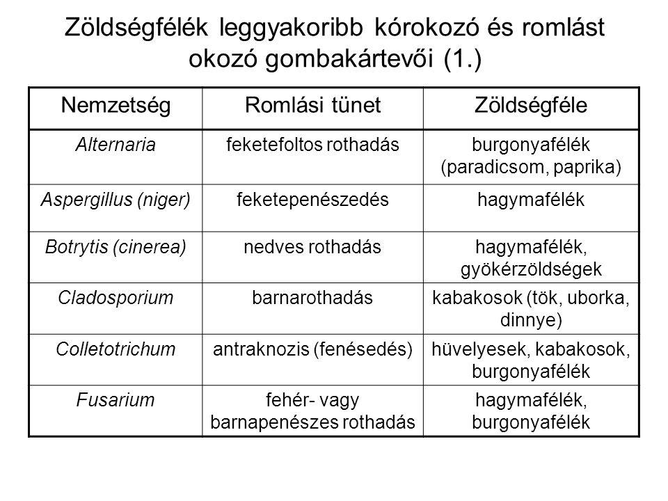 Zöldségfélék leggyakoribb kórokozó és romlást okozó gombakártevői (2.) NemzetségRomlási tünetZöldségféle Geotrichumsavanyú rothadás paradicsom Mucornedves rothadásparadicsom, gyökérzöldségek Penicillium (expansum)zöld-, kékrothadás hagymafélék, káposztafélék Phytophtora (infestans)barnarothadás, foltosodás burgonya (burgonyavész), levélzöldségek Rhizopusnedves rothadásburgonyafélék Sclerotiniafehérpenészes rothadás paradicsom, káposztafélék Trichotheciumlágyrothadáskabakosok