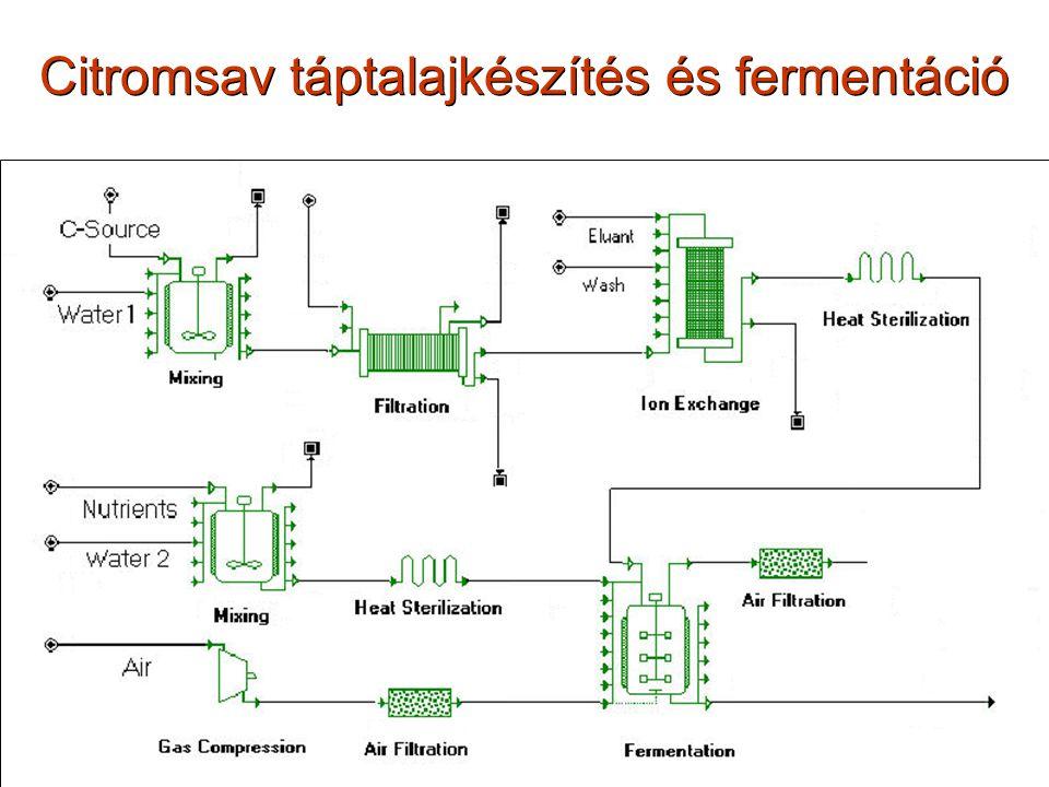A citromsav fermentáció lefutása Végső citromsav konc.: ~130 g/l melaszon; 200-250 g/l cukorból Konverzió: 87-92 %; Produktivitás: 0,67-0,75 kg citromsav/m 3 *h; ~16-18 kg citromsav/m 3 *nap Fruktóz: a szacharózból képző- dik invertálódással.