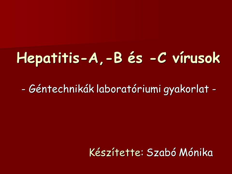 Hepatitis-A,-B és -C vírusok - Géntechnikák laboratóriumi gyakorlat - Készítette: Szabó Mónika Készítette: Szabó Mónika