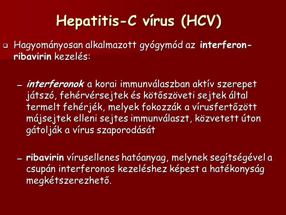 Hepatitis-C vírus (HCV)  Hagyományosan alkalmazott gyógymód az interferon- ribavirin kezelés: – interferonok a korai immunválaszban aktív szerepet játszó, fehérvérsejtek és kötőszöveti sejtek által termelt fehérjék, melyek fokozzák a vírusfertőzött májsejtek elleni sejtes immunválaszt, közvetett úton gátolják a vírus szaporodását – ribavirin vírusellenes hatóanyag, melynek segítségével a csupán interferonos kezeléshez képest a hatékonyság megkétszerezhető.