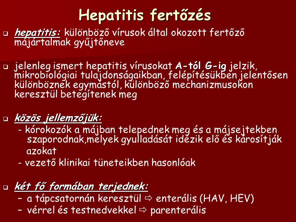 """Hepatitis-A vírus (HAV)  Picornavírus  Picornavírus család egyik legellenállóbb kórokozója   """" fertőző sárgaság vagy utazási hepatitis néven is ismert  Morfológia: - 27-32 nm átmérőjű, lineáris, egyszálú RNS, kubikális szimmetriájú – –igen ellenálló éter-, sav- és hőkezelésnek, fagyasztásnak, detergenseknek – –szobahőmérsékleten egy hónapig fertőzőképes"""