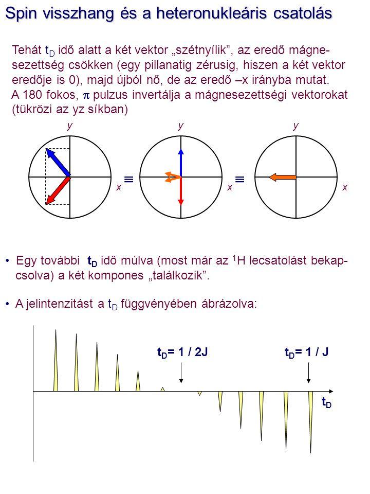 """Spin visszhang és a heteronukleáris csatolás Tehát t D idő alatt a két vektor """"szétnyílik"""", az eredő mágne- sezettség csökken (egy pillanatig zérusig,"""