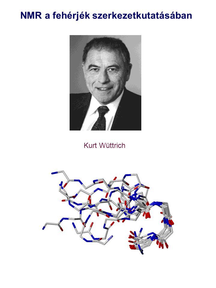 NMR a fehérjék szerkezetkutatásában Kurt Wüttrich