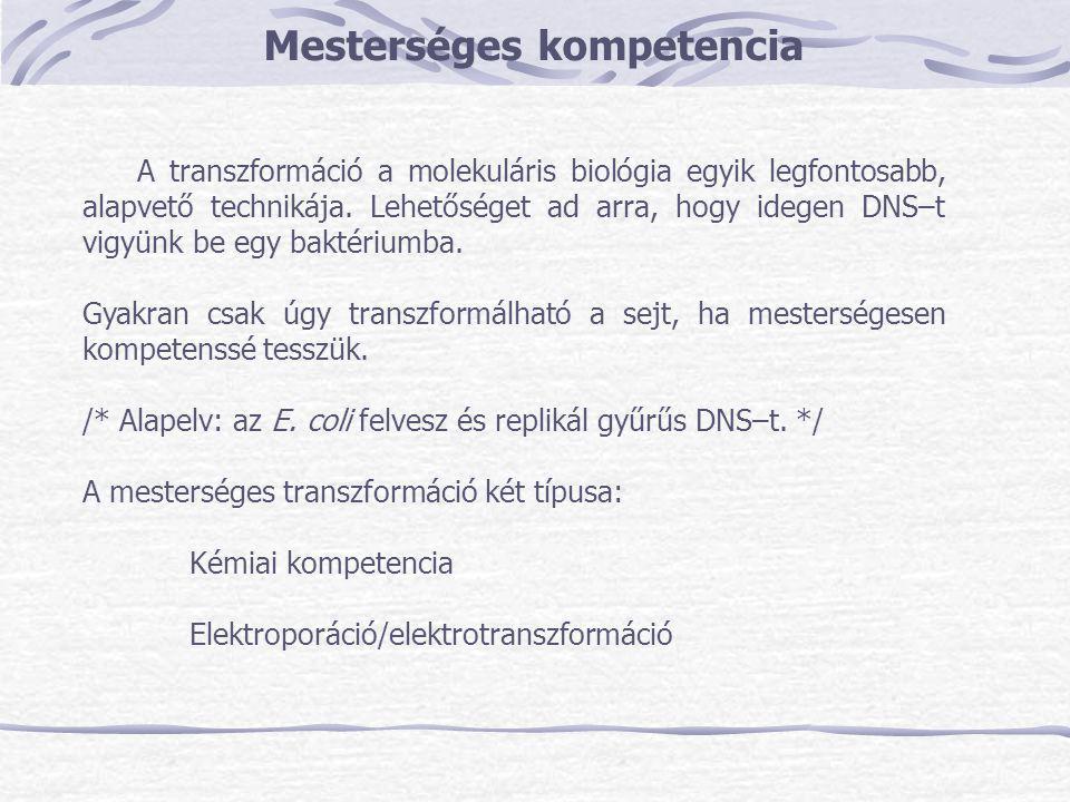 A transzformáció hatékonysága Transzformációs gyakoriság Sejtszámra: transzformánsok száma/μg DNS plazmidok száma/μg DNS a sejtek hány %–a kapott plazmidot DNS-re: a DNS molekulák hány %–a transzformált sejtet MódszersejtszámraDNS–re kémiai kompetencia1%12% elektrotranszformáció10%90%