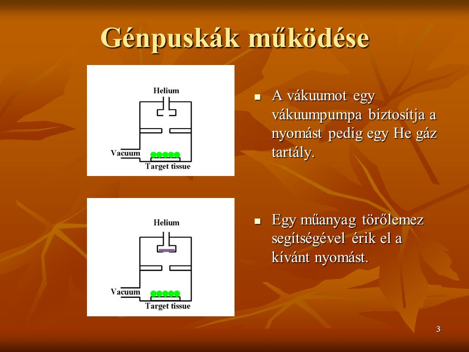 3 Génpuskák működése A vákuumot egy vákuumpumpa biztosítja a nyomást pedig egy He gáz tartály.