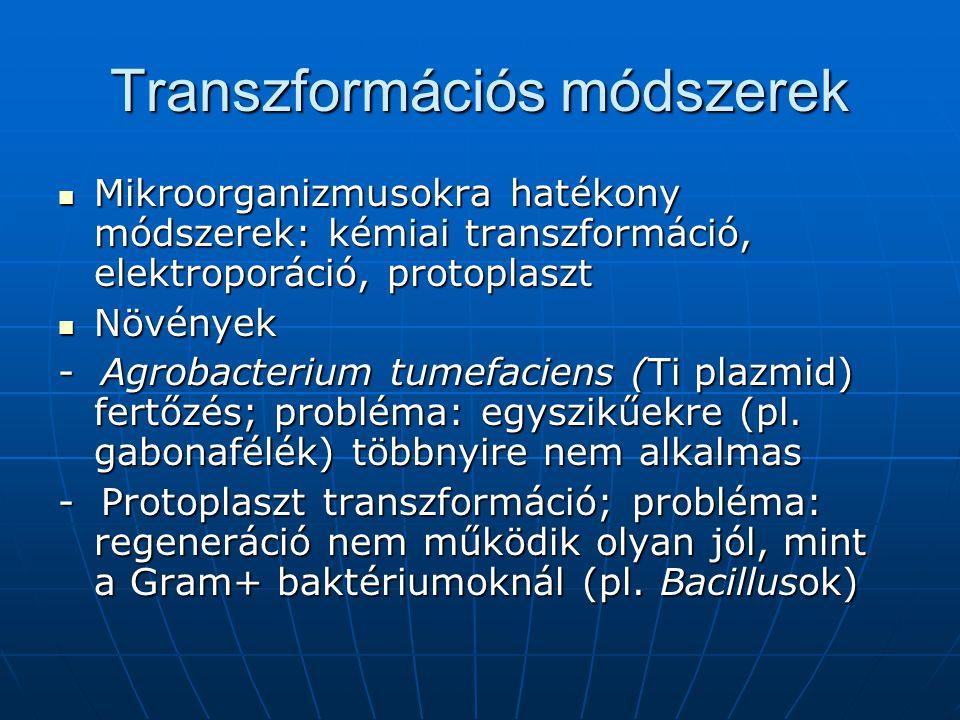 Transzformációs módszerek Mikroorganizmusokra hatékony módszerek: kémiai transzformáció, elektroporáció, protoplaszt Mikroorganizmusokra hatékony móds