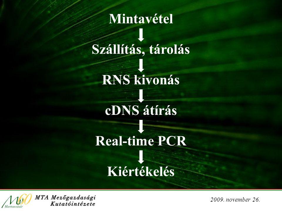 2009. november 26. Mintavétel Szállítás, tárolás RNS kivonás cDNS átírás Real-time PCR Kiértékelés