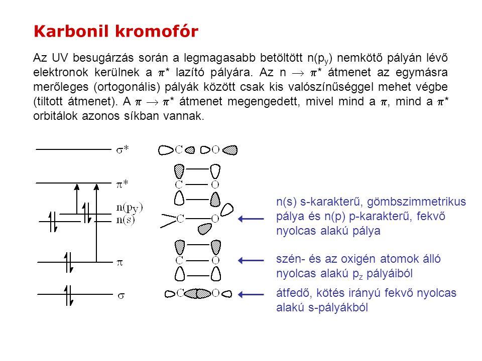 Karbonil kromofór Az UV besugárzás során a legmagasabb betöltött n(p y ) nemkötő pályán lévő elektronok kerülnek a  * lazító pályára. Az n   * átme