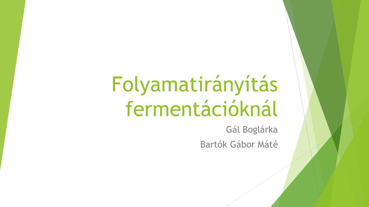 Folyamatirányítás fermentációknál Gál Boglárka Bartók Gábor Máté