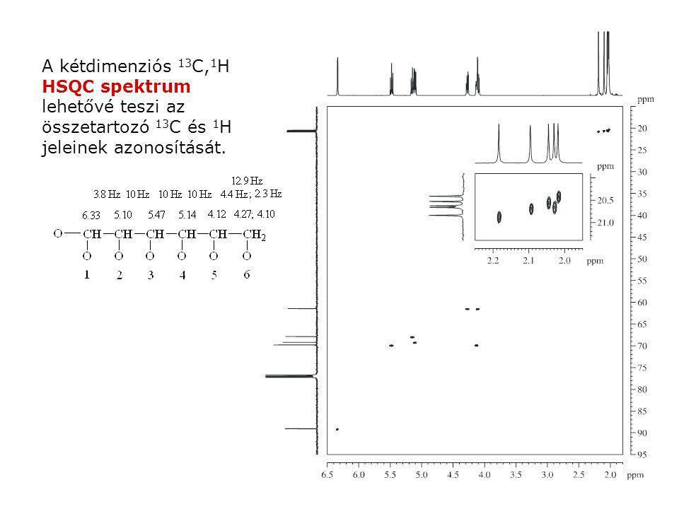 A kétdimenziós 13 C, 1 H HSQC spektrum lehetővé teszi az összetartozó 13 C és 1 H jeleinek azonosítását.
