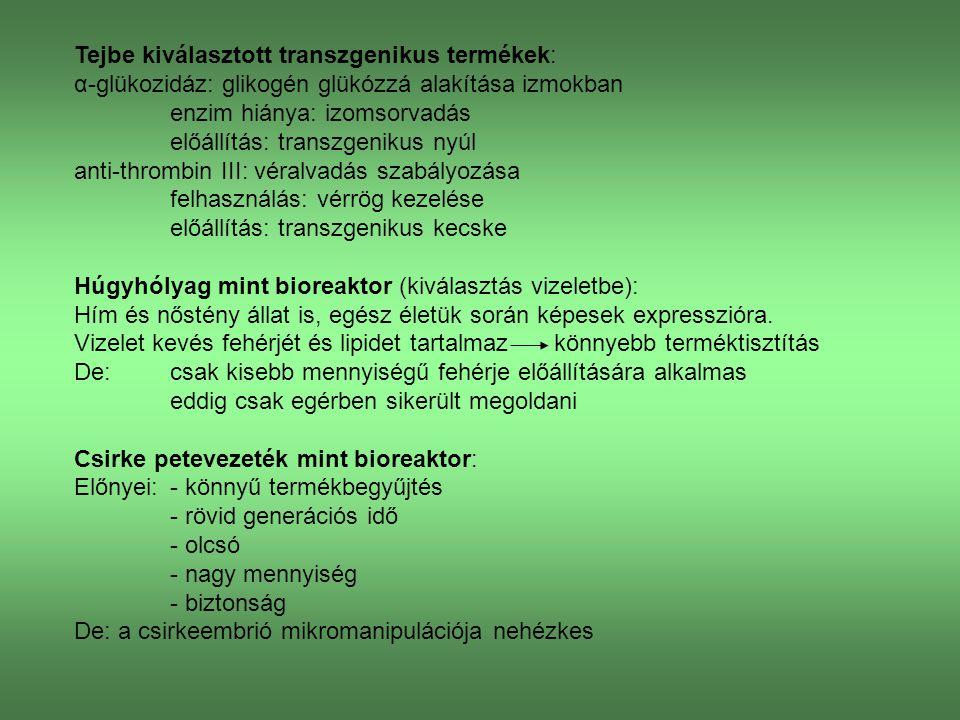 Betegségmodellek Emberi betegségeknek transzgénikus laborállatokon való modellezése.
