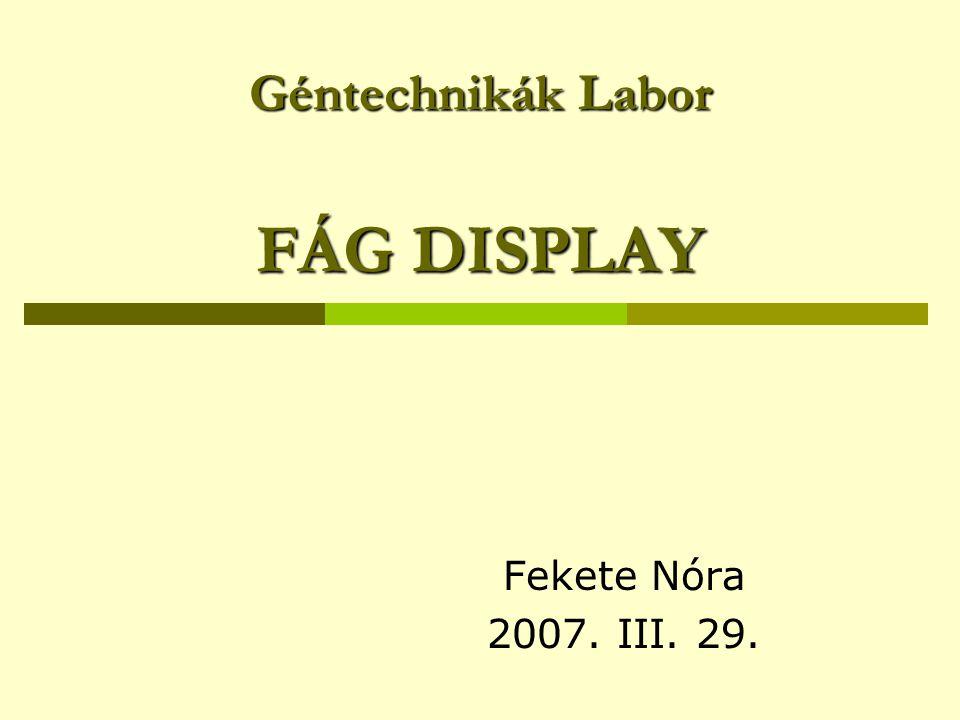 Géntechnikák Labor FÁG DISPLAY Fekete Nóra 2007. III. 29.