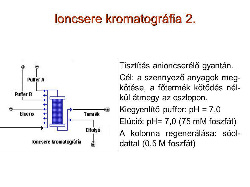 Ioncsere kromatográfia 2. Tisztítás anioncserélő gyantán. Cél: a szennyező anyagok meg- kötése, a főtermék kötődés nél- kül átmegy az oszlopon. Kiegye