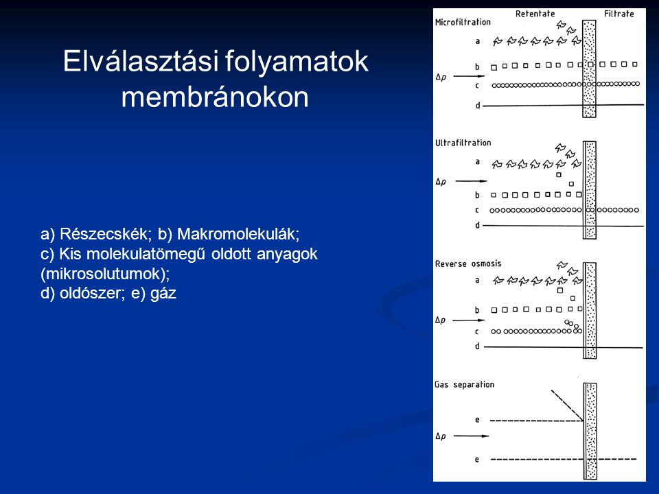 a) Részecskék; b) Makromolekulák; c) Kis molekulatömegű oldott anyagok (mikrosolutumok); d) oldószer; e) gáz Elválasztási folyamatok membránokon