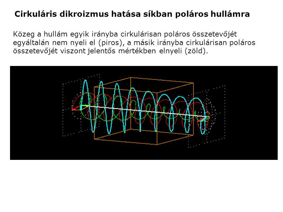 Közeg a hullám egyik irányba cirkulárisan poláros összetevőjét egyáltalán nem nyeli el (piros), a másik irányba cirkulárisan poláros összetevőjét visz
