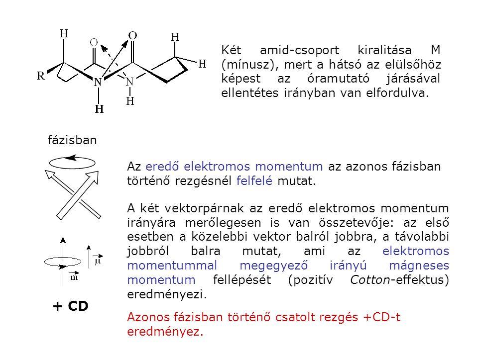 fázisban + CD Az eredő elektromos momentum az azonos fázisban történő rezgésnél felfelé mutat. A két vektorpárnak az eredő elektromos momentum irányár