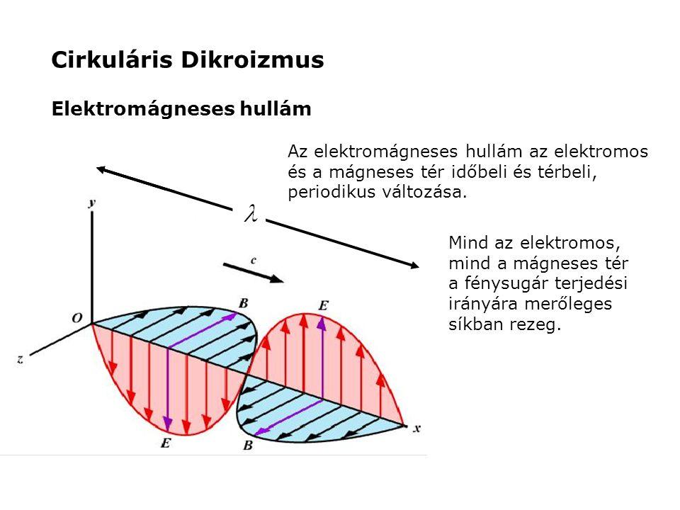 Cirkuláris Dikroizmus Elektromágneses hullám Mind az elektromos, mind a mágneses tér a fénysugár terjedési irányára merőleges síkban rezeg. Az elektro