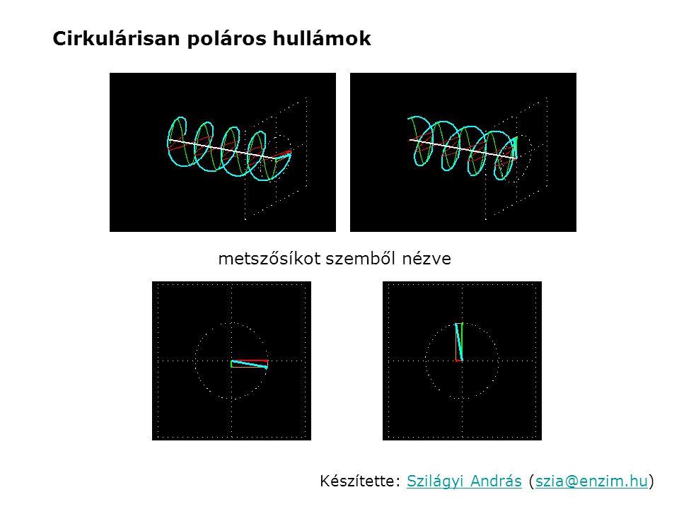 Két, egy jobbra és egy balra cirkulárisan poláros fény szuperpozíciójának eredménye: Cirkulárisan polarizált hullámok szuperpozíciója metszősíkot szemből nézve Készítette: Szilágyi András (szia@enzim.hu)Szilágyi Andrásszia@enzim.hu Két, cirkulárisan poláros fény összeadása síkban poláros fényt eredményez.